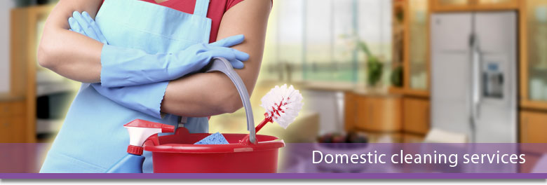 domestic-cleaning-services.jpg