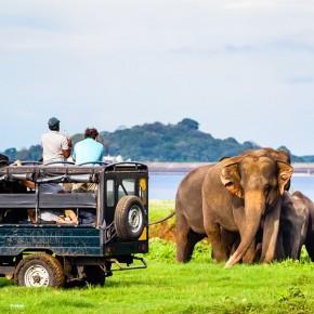 Sri_Lanka_8_1.jpg