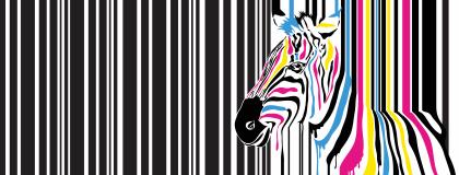 Chichester Print Zebra